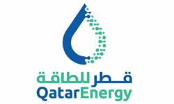 SR  PETROPHYSICAL ENGINEER
